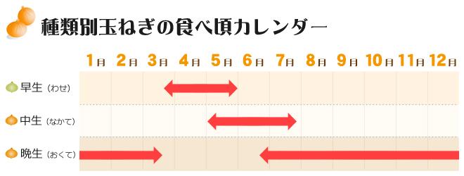 玉ねぎの食べ頃カレンダー